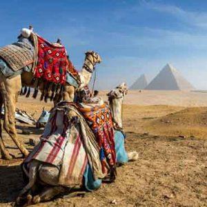egypt-gift-tours-day-tours