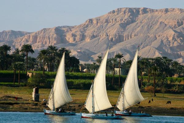 Felucca 9 Luxor
