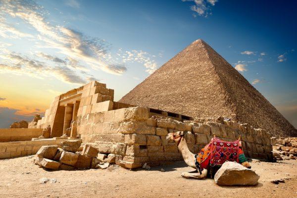 Giza 16