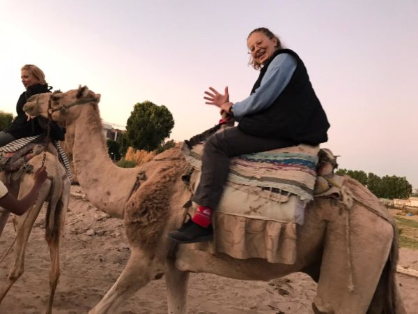 camel 20